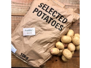 Washed Potatoes (10Kg Bag)