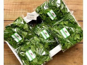 Baby Leaf Spinach (Box 10 x 200g)