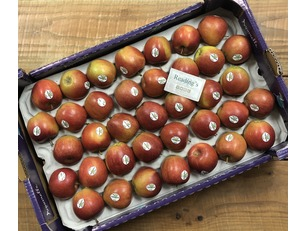 Braeburn Apples (Box Approx 74)