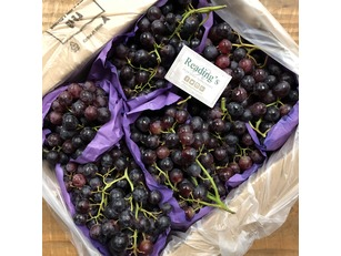 Seedless Red Grapes (4.5Kg Box)