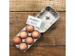 Large Eggs (Tray 6) (Lion Brand)