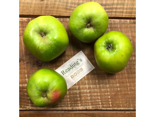 Bramley Apples (4 Pack)