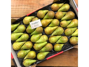 Conference Pears (12Kg Box)
