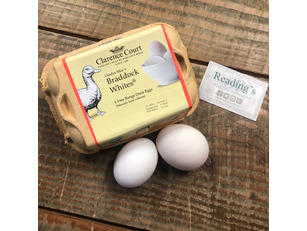 Braddock Whites (Free Range) Duck Eggs (Tray 6)