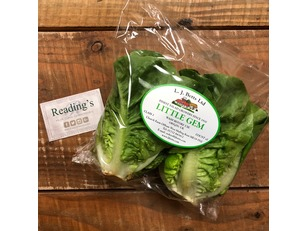Little Gem Lettuces (Twin Pack)