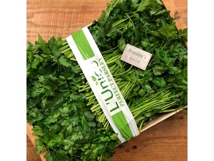 Italian Flat Leaf Parsley (Box)