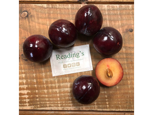 Plums (5 Pack)